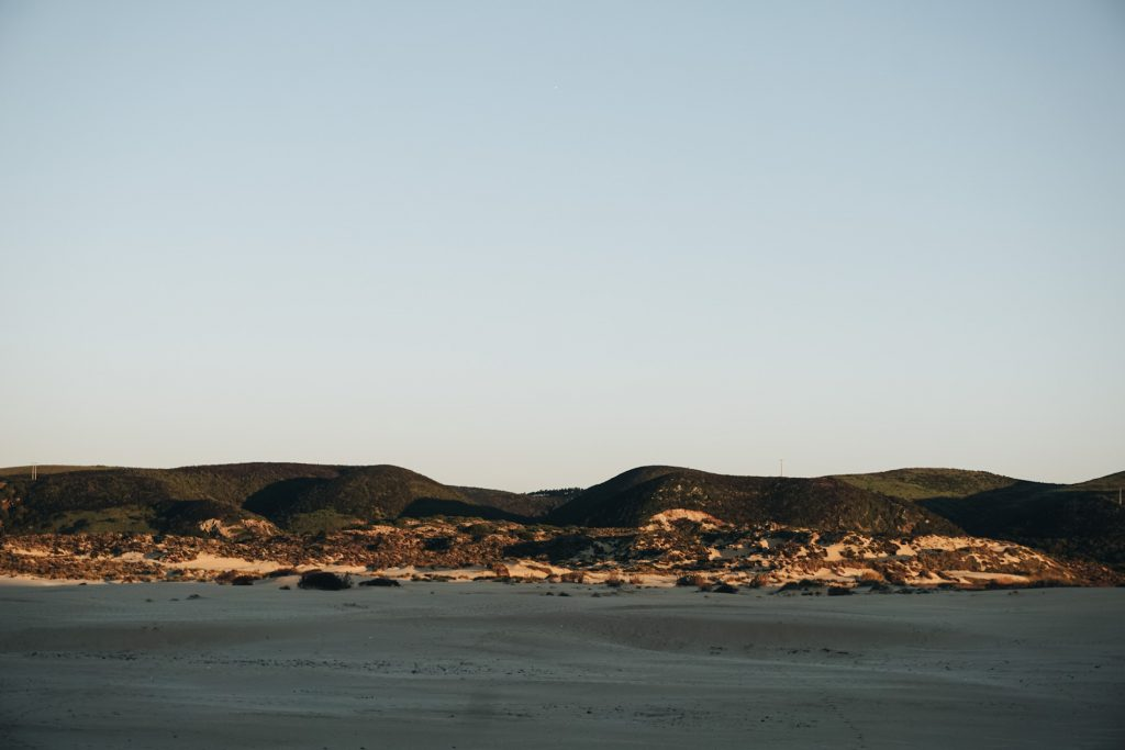 Carrapateira Beach Dunes